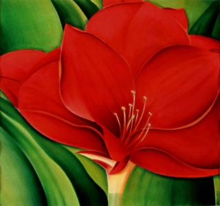<h5>Amaryllis</h5><p><strong>Sold</strong> <span><cite>Size</cite>51cm x 54cm </span> <span><cite>Medium</cite> Ink</span></p>