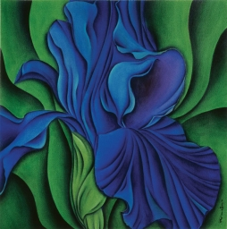 <h5>Iris</h5><p><strong>Sold</strong> <span><cite>Size</cite>30cm x 10cm </span> <span><cite>Medium</cite> Ink</span></p>